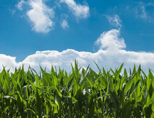Strengthening the future of sustainable agriculture in Pennsylvania