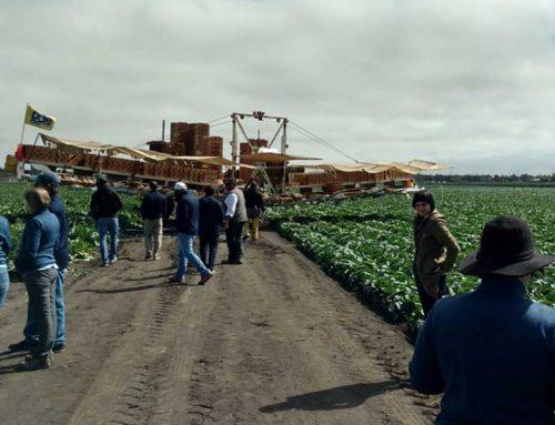 A tour of California's farm belt