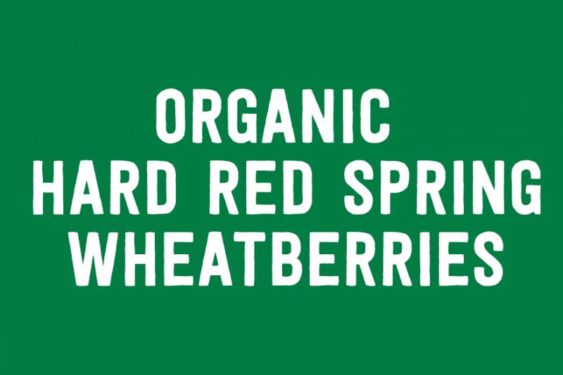 Organic Hard Red Spring Wheatberries