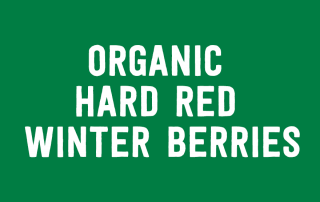 Organic Hard Red Winter Berries
