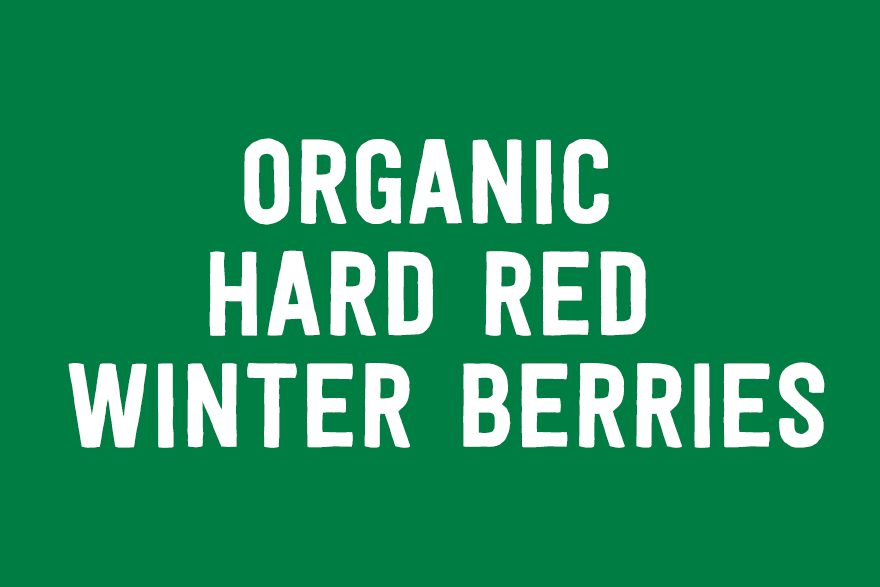 Organic Hard Red Winter Berries