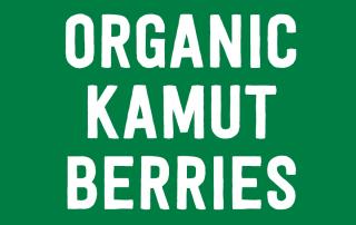 Organic Kamut Berries